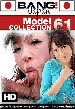 Model Collection 61 (2018)
