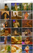 Hot Body Competition: Wet T's & Bikinis the Best of Beverly Hills (1995)