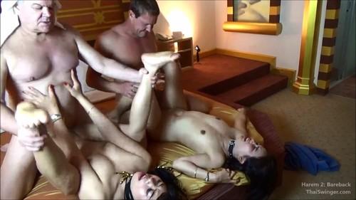 Thaiswinger.com - Harem 2: Thai Slave Wife Insemination