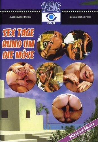 Sex Tage Rund Um Die Mose