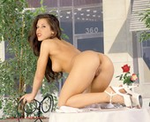 WWE Diva Mickie James Nude Pics From Her Porn Past!
