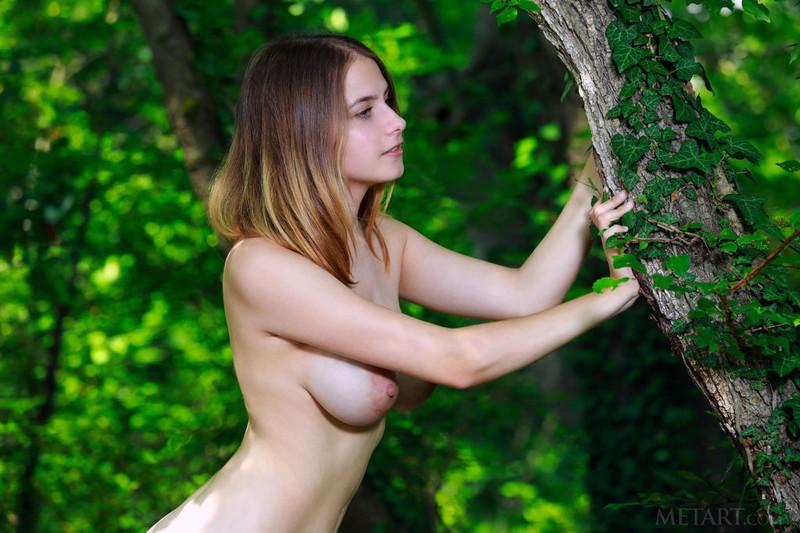 Dakota Pink - Lost In Nature