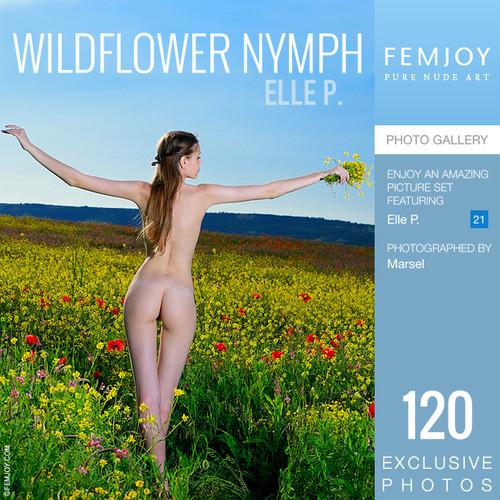 Elle P - Wildflower Nymph